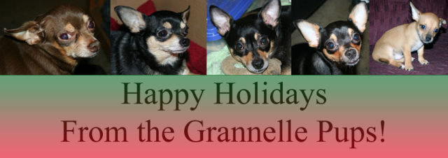 Happy holiday wishes from the Grannelle pups