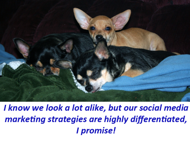 I know we look a lot alike, but our social media marketing strategies are highly differentiated, I promise!
